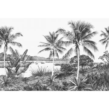 fototapet tropisk landskab med palmetræer sort og hvidt fra ESTA home