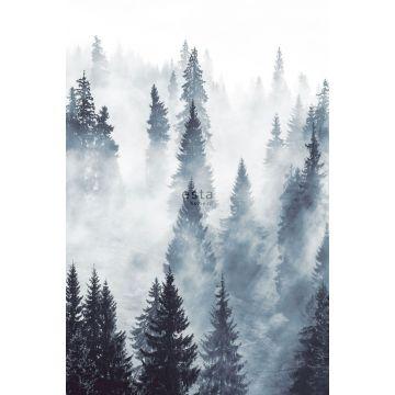 fototapet tåget skov grønt fra ESTA home