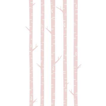 fototapet birkestammer skinnende lyserødt fra ESTA home