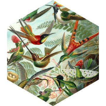 wallsticker fugle tropisk junglegrønt fra ESTA home