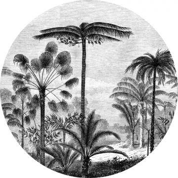 selvklæbende fototapet rundt tropisk landskab med palmetræer sort og hvidt fra ESTA home