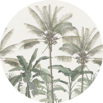selvklæbende fototapet rundt palmetræer lysebeige og gråligtgrønt fra ESTA home