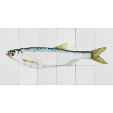 wallsticker fisk gul og blåt fra ESTA home