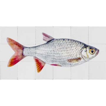 wallsticker fisk gråt og rødt fra ESTA home