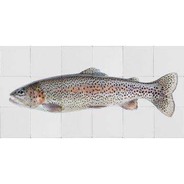 wallsticker fisk varmgråt og lakserosa fra ESTA home